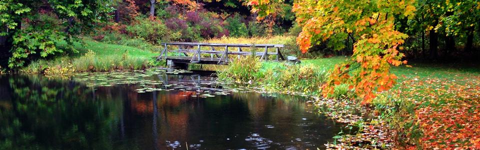 Branstrom Park Slider
